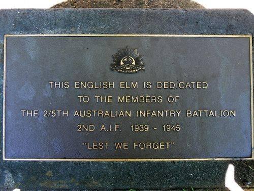 2/5th Infantry Battalion : 12-November-2011