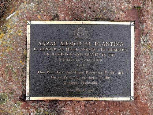 ANZAC Avenue : 24-August-2011