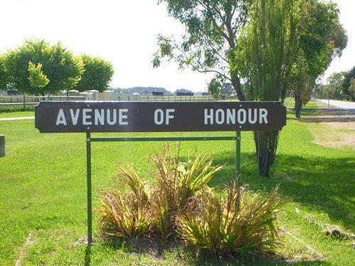 Avenue of Honour : 13-December-2011