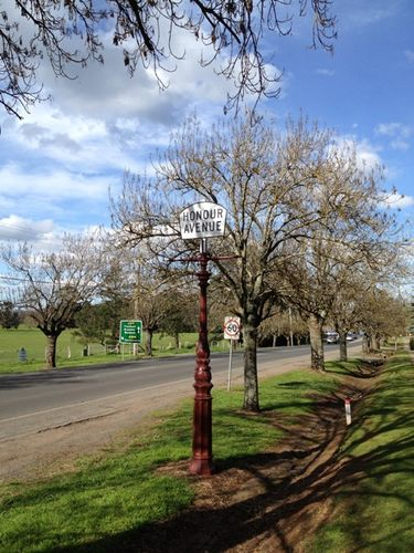 Daylesford Avenue of Honour : 15-09-2013