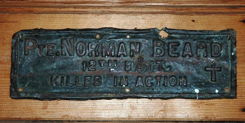 16-May-2016 : Plaque from a dead tree