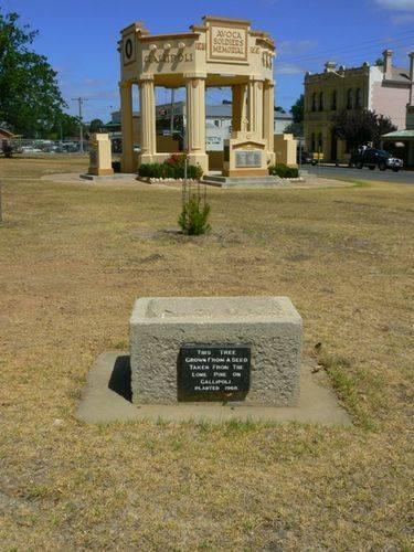 Avoca Lone Pine Memorial