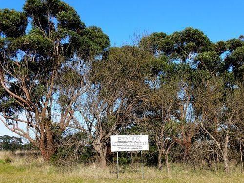 Byaduk Memorial Plantation : 23-August-2011
