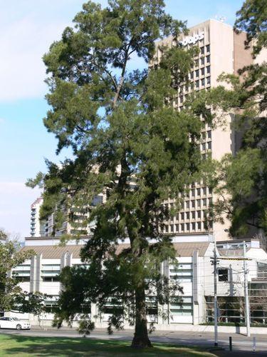 Central Bureau : 21-September-2011