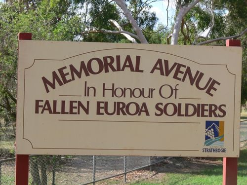 Euroa Memorial Avenue : 12-May-2013