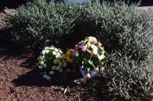Janine Balding Memorial