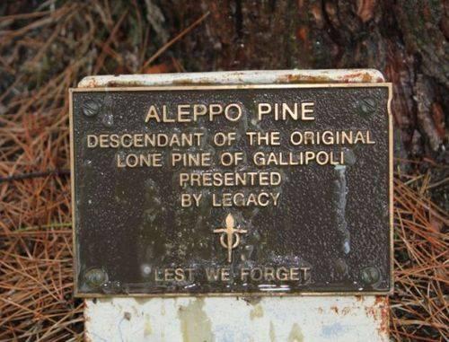 Lone Pine Memorial Plaque  : 13-October-2012