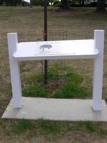 Lone Pine Memorial : 20-January-2013