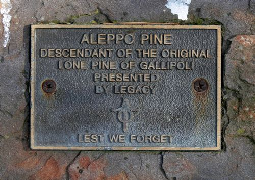Lone Pine Memorial : 09-March-2013