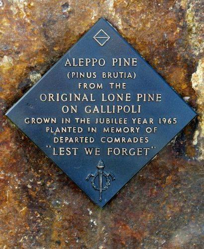 Lone Pine Memorial : 11-August-2011