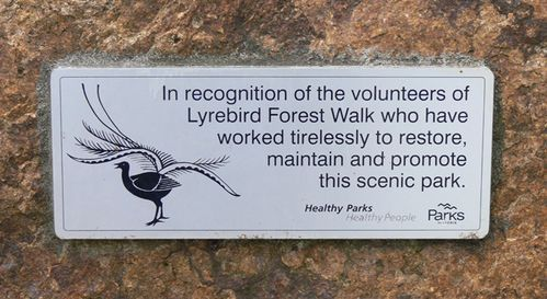 Lyrebird Forest Walk : 14-April-2013