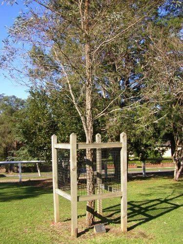 Macarthur Park Centenary : 16-June-2014