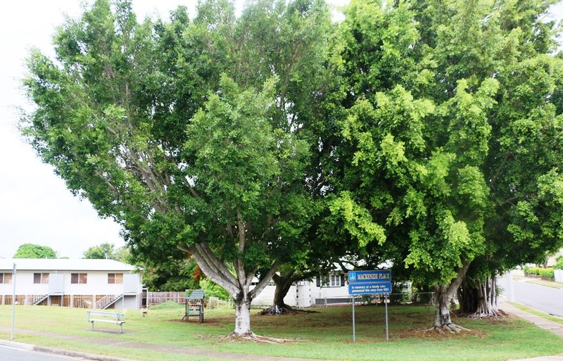 Mackenzie Family | Monument Australia
