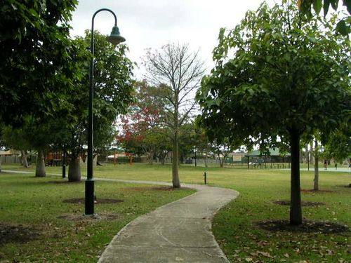 Mulbeam Park Trees