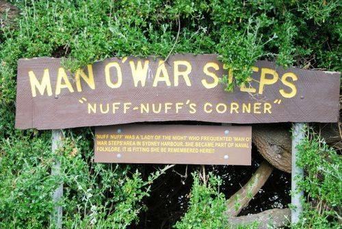 Nuff-Nuff`s Corner : 22-November-2011