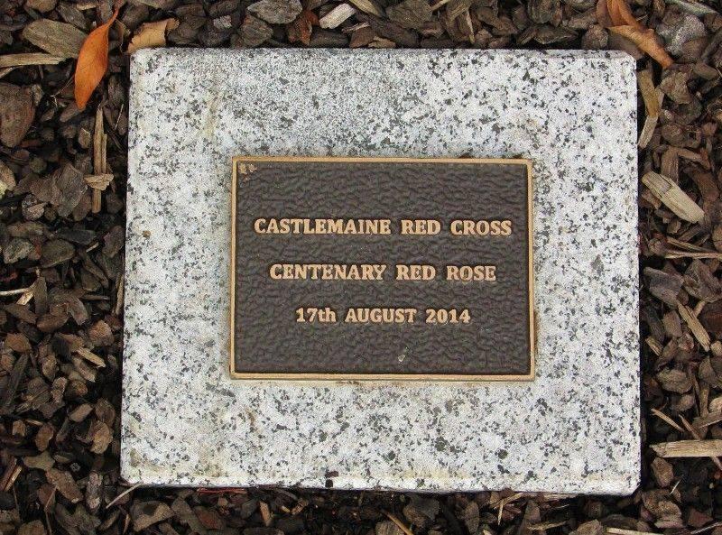 Centenary Rose Plaque : 23-April-2015