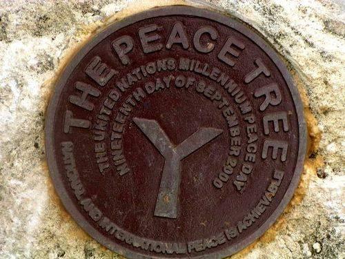 Walpole Peace Tree Inscription
