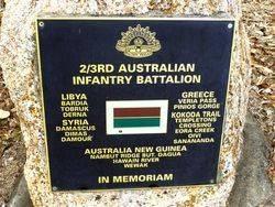2nd / 3rd Australian Infantry Battalion