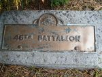 46th Battalion