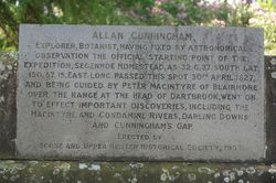 Cunningham Inscription: 10-November-2014