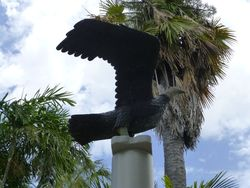 Eagle : 19-October-2014