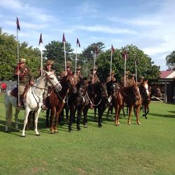 Troop of the Australian Army veterinary Corps : 30-May-2015