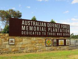 Plantation 2: 10-May-2015