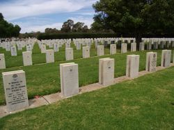 Cemetery 2 :28-November-2015