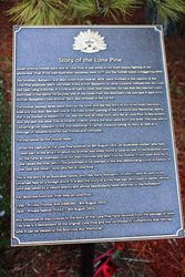 Lone Pine Plaque : 25-September-2016 (Roger Johnson)