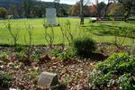 Sir Donald & Lady Bradman Garden : August-2014