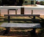 Denham CWA Pioneer Seat