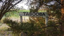 Tabooba sign: 23-October-2016