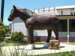 Clydesdale Statue Side View