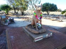 Monuments And Memorials Within Australia Associated With Animals