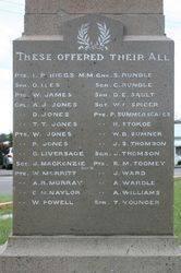 War Memorial 2 : 08-April-2015