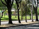 Eighth Division Memorial Avenue 2007