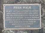 Fern Walk : 14-June-2013