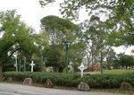 Geoff Levey Memorial Garden : 18-04-2014