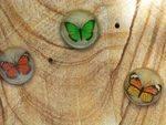 Grantham Flood Memorial Butterflies