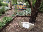 Farquharson Memorial Garden : November 2013