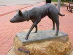 kelpie Memorial : 27-03-2014