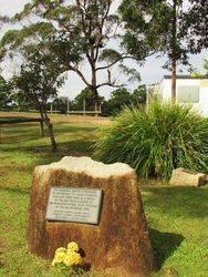 Memorial Grove 3 : 19-May-2015