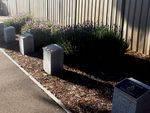 Kangaroo Flat Plaques : 16-11-2013