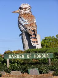 Kurri Kookaburra 2 : 11-September-2014