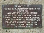 Legacy Tree Plaque : 26-02-2014