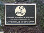 Lioness Club : 18-August-2011