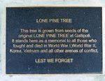 Lone Pine : 25-November-2011