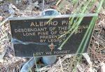 Lone Pine : 12-May-2013