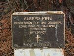 Lone Pine Memorial Plaque  : 13-October-2012