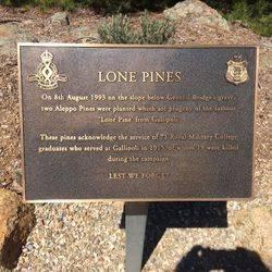 Lone Pine Plaque: 19-February-2016